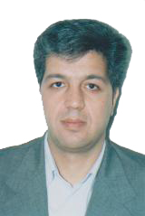 رضا فراهانی -بورغانی